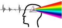 BrainSurfing - Das Denklabor!
