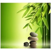 Stressresilienz Stressbewältigung Stress-stabil