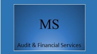 Michael Schwarz Audit & Financial Services