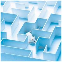 Zertifizierter Kunden-Kompetenz-Techniker MeFeS ® Methodische Fehlersuche