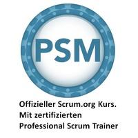 Professional Scrum Master - (PSM)